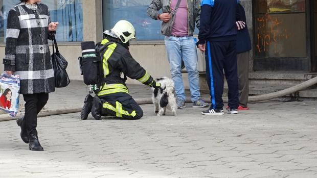 Две деца се надишаха с дим при пожар в Благоевград