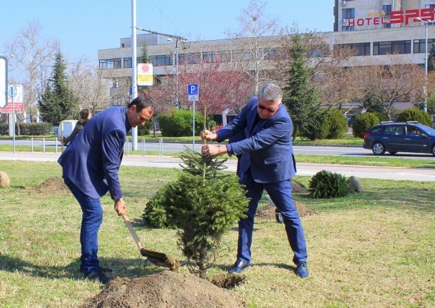 Над 60 дръвчета засади ГЕРБ в Пловдив за Първа пролет