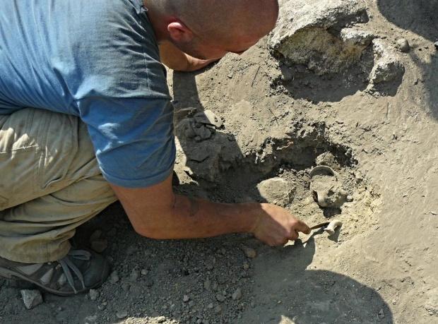 Започват археологически проучвания в над 40 обекта в Северозападна България