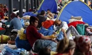 139 имигранти са били задържани в Турция