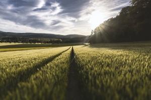 Снимка: Приеха Стратегията за цифровизация на земеделието