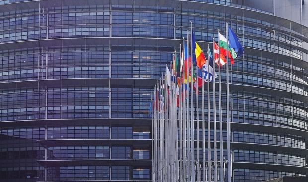 Стартира подписка за издигане на Иванчева за евродепутат