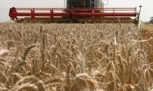 Правителството увеличи броя на заместник-министрите в Министерството на земеделието, храните