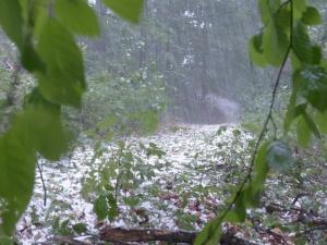 Мощна буря с градушка удари Северозападна България. Леден дъжд с