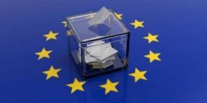 Министерството на външните работи (МВнР)организира за европейските избори общо191 избирателни