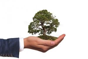 Отбелязваме на Световния ден на околната среда. Темата на 2019