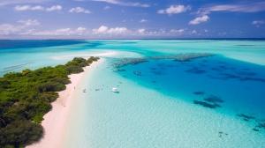 8 юни е Световният ден на океана. Идеята на този