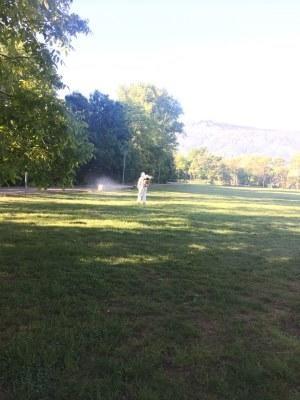 Започва опушването срещу комари в Плевен