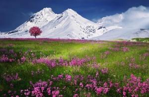 Планинската спасителна служба при БЧК предупреждава за лоши условия за туризъм