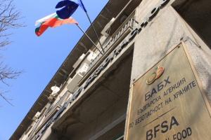 Снимка: Полицията в Пловдив арестува двама служители на БАБХ за корупция