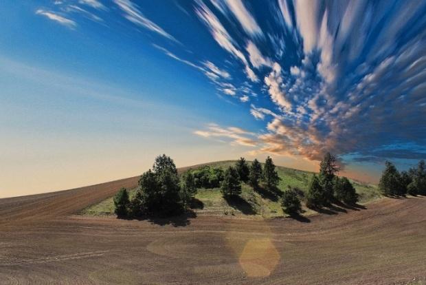 Обезлесяването ще доведе до нови епидемии в световен мащаб