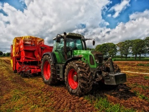Снимка: Добра зърнена реколта въпреки значителните валежи над Севлиево