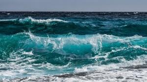 По-топлите води край бреговете на Девън и Корнуол могат да