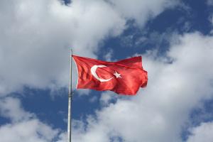 Снимка: Над 30 души са задържани при демонстрации в Турция