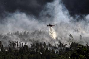 Бразилия отказа помощта на Г-7 за борба с пожарите в