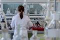 Няма Западнонилска треска в България