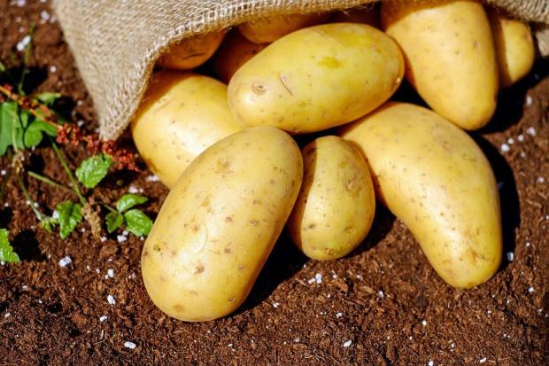 Картофите поскъпнали с близо 50% за година