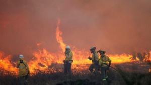 Снимка: Близо 3900 нови пожара пламнаха в Амазония само за 48 часа