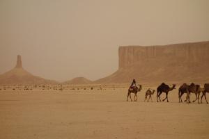 Девствена природа, скрита зад пясъчни дюни скоро ще бъде достъпна
