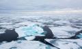 Доклад на ООН алармира за ефекта от климатичните промени