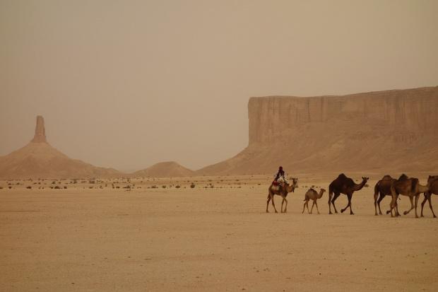 Саудитска Арабия се отваря за туристи, пуска ги и по свещените места