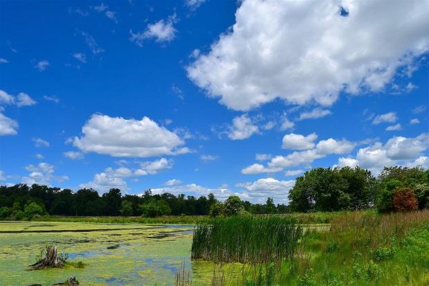 Предимно слънчево с временни увеличения на облачността и почти без валежи