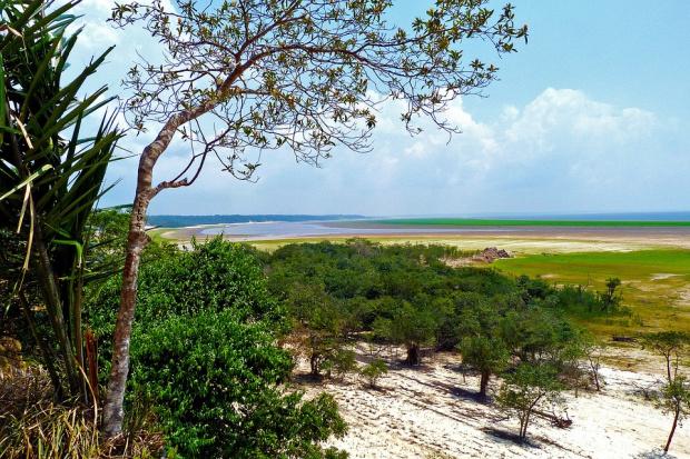Снимка: 100 млн. долара за възстановяването на Амазония вадят Бразилия и САЩ