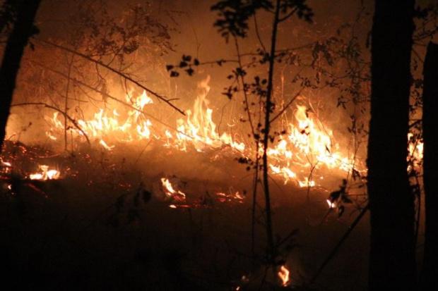 Голям горски пожар избухна на гръцкия остров Кефалония в района