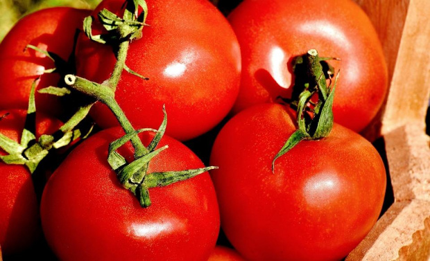 Ръст на зеленчуците внос от чужбина. Експертите твърдят, че причината