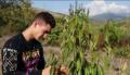 Браво! 17-годишен земеделец стана хит в социалните мрежи (ВИДЕО)