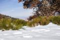 Зимата дойде! Мусала побеля (СНИМКА)