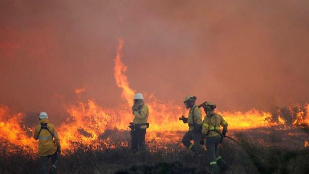 100 хил. евакуирани в Калифорния заради пожарите