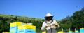 Пчелари излизат на протест