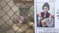 Причината за смъртта на 9-годишното дете в Кардам - отрова за гризачи