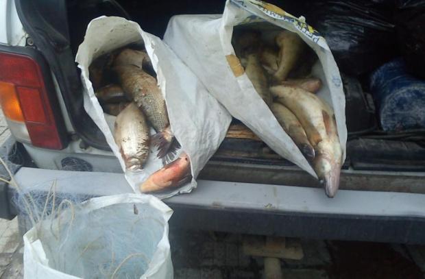 (ВИДЕО) Бракониери опразниха язовир Камчия, извадиха 6 тона риба
