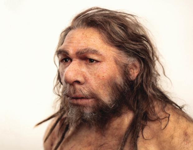 Специалисти разкриха загадка, свързана с изчезването на неандерталците