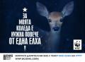 WWF си пожелава още повече истински гори, през новата година