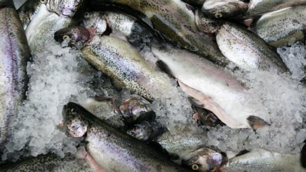 За Никулден: Ядем шаран от фризера или риба от Мароко и Канада