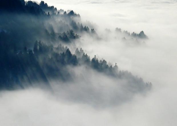 """Гъста мъгла затруднява движението по магистрала """"Струма"""". Това съобщават от"""