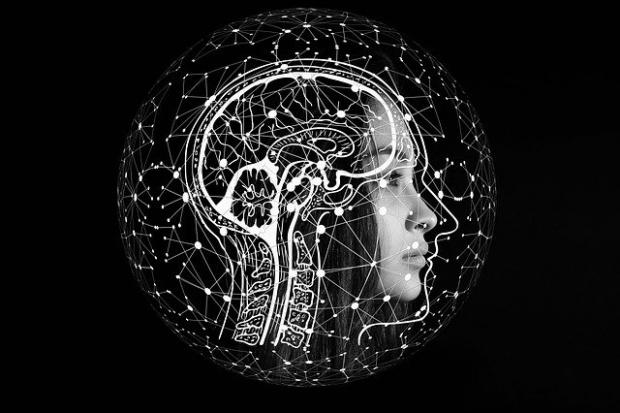 Учени предричат катастрофален спад на човешкия интелект