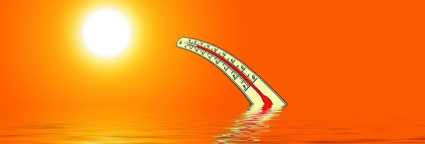 2019 г. е била втората най-гореща година и приключва най-топлото
