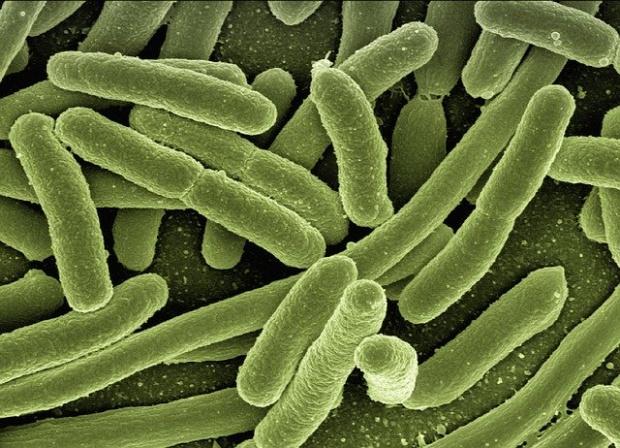 След заразяване с мистичния вирус в Китай: 10 души в критично състояние