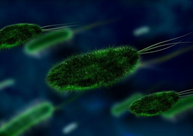 В Русия бяха потвърдени два случая на заразени с коронавирус