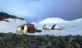 Рекордно високи температури са отчетени на Антарктида