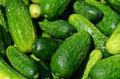 За седмица краставиците на едро поевтиняха с 5,4%