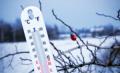 Любопитни факти за зимата