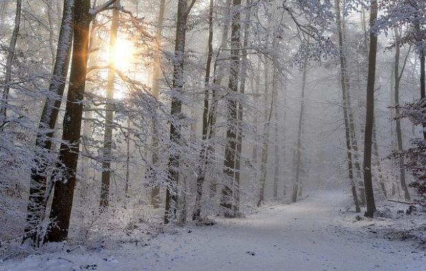Днес преди обяд снеговалежите ще продължат, но след обяд от