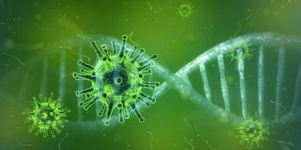 Броят на засегнатите новия коронавирус в Италия достигна 888 души,