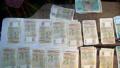 Българо-чуждестранни бизнес организации искат замразяване на плащането на данъци и осигуровки