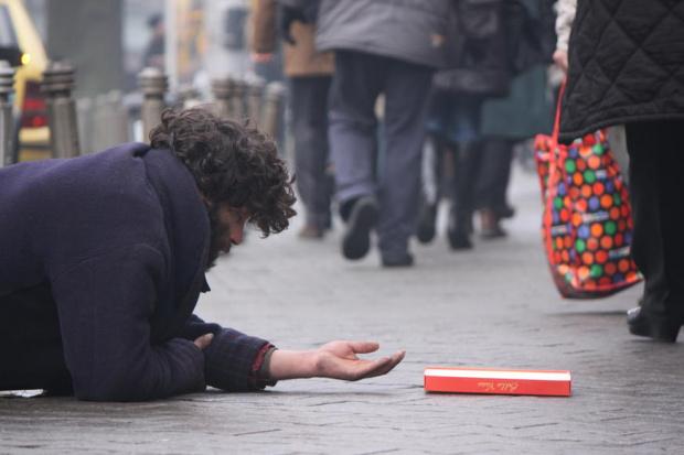 Двата приюта за бездомни в област Велико Търново са в